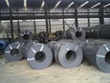 L'acciaio inossidabile si arrotola (304 316 316L 321)