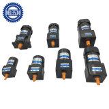 120V 40W kleine Wechselstrom-Gang-Motoren mit Geschwindigkeits-Controller