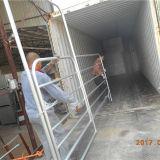 5FT*12FTの金属の鋼鉄携帯用馬はパネルを包囲する