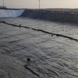 Zwarte Plastic HDPE Geomembrane van het Membraan van het Blad Waterdichte