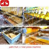 Yzyz doppelte Schrauben-Palmen-Frucht-Ölmühle-Maschinerie