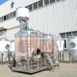 System das 10 Zylinder-Microbrewery für Brewpubs kostet Fermentators