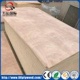Compensato della quercia del Basswood di BB/CC Okoume WBP per mobilia ed imballaggio
