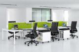 La partición popular diseña los sitios de trabajo modernos de la computadora de la persona de la oficina 6 (SZ-WS530)