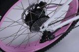 Bella bicicletta della signora Fat Tire Lithium Electric di alta qualità