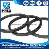 PTFE стальная пружина под напряжением уплотнения гидравлического цилиндра