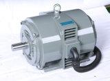 Moteur électrique triphasé seulement pour le compresseur haut efficace et l'Enegy-Économie