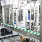 Bouteille automatique d'animal familier de constructeur de la Chine buvant la machine à emballer remplissante de mise en bouteilles d'eau minérale