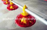 Sistema profondo del disordine del nuovo pollo dell'azienda avicola