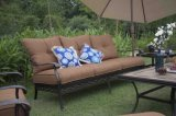 Pátio de Traditoinal EUA 7 partes da mobília ao ar livre ajustada de Garen do alumínio de molde do sofá de Sectoinal