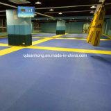 De Mat van het Raadsel van de Karate van Tatami van de Mat van Taekwondo van het Schuim van EVA
