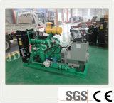 세륨과 ISO를 가진 새로운 에너지 100kwlow BTU 가스 발전기 세트