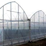 Mejor Película Agrícola Comercial de gases de efecto para la venta