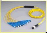 MPO Sc 12f는 0.9mm 접속 코드를 펼친다