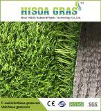 ゴルフコースの芝生の高品質の速い配達