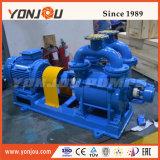 中国の電気ステンレス鋼液体水リングの真空ポンプ
