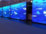 P6 la visualizzazione di LED esterna dell'affitto della pressofusione per il video