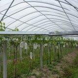 Agricultor usa tecido descartável de tecido não tecido de PP Spunbond para coberturas de plantas