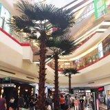 상점가 훈장을%s 큰 인공적인 부채꼴 야자수 나무