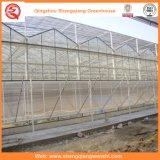 冷却装置が付いている農業またはコマーシャルまたは庭のガラス温室