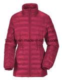 Зима женщин проложенная вниз с куртки
