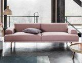 Tessuto moderno Sofa-Hc159 del salone della mobilia domestica