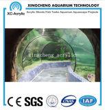 Het aangepaste Grote Project van de Tank van de Haai van de Tunnel van het Aquarium Acryl Materiële