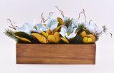 Louro de Bull artificial na caixa de madeira longa/potenciômetros cerâmicos da bacia para a decoração