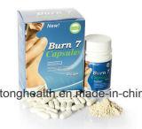 Heißes Fett-Gewicht der Verkaufs-Brandwunde-7 verringern, Gesundheits-Produkt abzunehmen