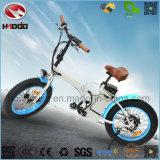 [فولدبل] [350و] كهربائيّة درّاجة [ليثيوم بتّري] إطار العجلة سمين يطوي درّاجة [إن15194] [أبّورفد]