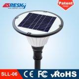 Constructeur solaire décoratif de réverbère du prix bas 30W DEL