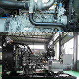 800kw / 1000kVA Generator Ser avec Perkins Diesel Engine / Power Generator avec ATS (commutable)