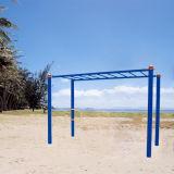 Apparatuur van de Geschiktheid van de Staven van de aap de Openlucht voor Volwassen Oefening