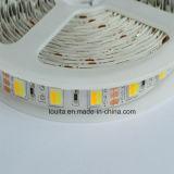 Blanco y blanco cálido dos chips en una tira de LED 5025