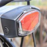 """"""" велосипед города способа 26 электрический для повелительницы (RSEB-203)"""