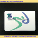 Cor de Pantone com tira magnética para o cartão da identificação