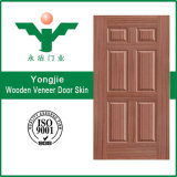 Yongkang에 있는 아름다운 베니어 문 피부