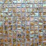 Mosaico del shell de Paua del mosaico del shell del olmo