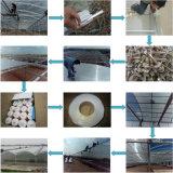 屋根ふきのためのポリカーボネートの中国の10年の保証によって曇らされる固体シート