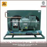 Unità di condensazione di vendita calda per il congelatore