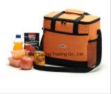 Saco Multifunction do refrigerador do saco do piquenique com tamanho de Customed