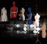 A meia tela do corpo envolveu o Mannequin para o vestido de Windows
