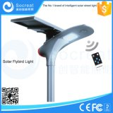 Certificat UE 15W 20W, Protection IP65, Intelligence Artificielle Solar Street Light