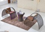 Гостиница отдыха, вилла, стулы кафа и таблицы и стулы и таблицы балкона
