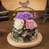 Kreative konservierte Blume mit Licht für Geschenk