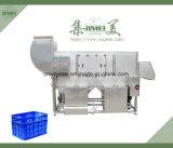 플라스틱 상자를 위한 산업 자동적인 세탁기