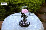 보존한 신선한 꽃 결혼 선물