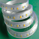 높은 산출 ETL 승인되는 6000k 5630 LED 지구 빛