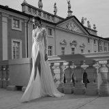 レースの人魚のガウンの花嫁のウェディングドレス(夢100103)