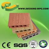 Decking contínuo ou oco do revestimento ao ar livre da fábrica de China de WPC